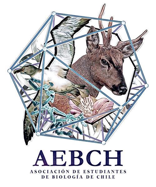 aebch